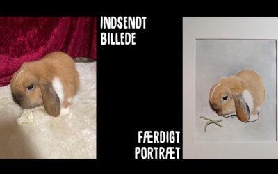 Præmien fra portrætkonkurrencen er ankommet