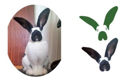 Historien bag Kaninværnets logo